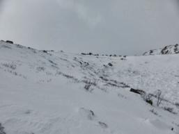 Avalanche dans le massif du Renosu